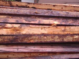 Wissenswertes über Altholz